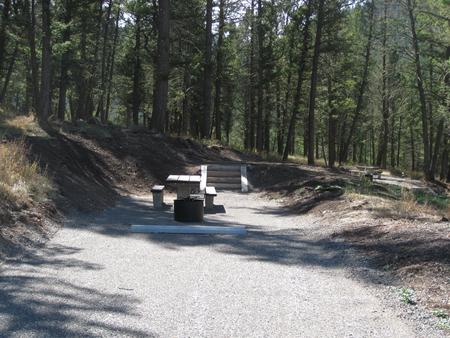 Site 42, campsite surrounded by pine trees, picnic table & fire ringSite 42