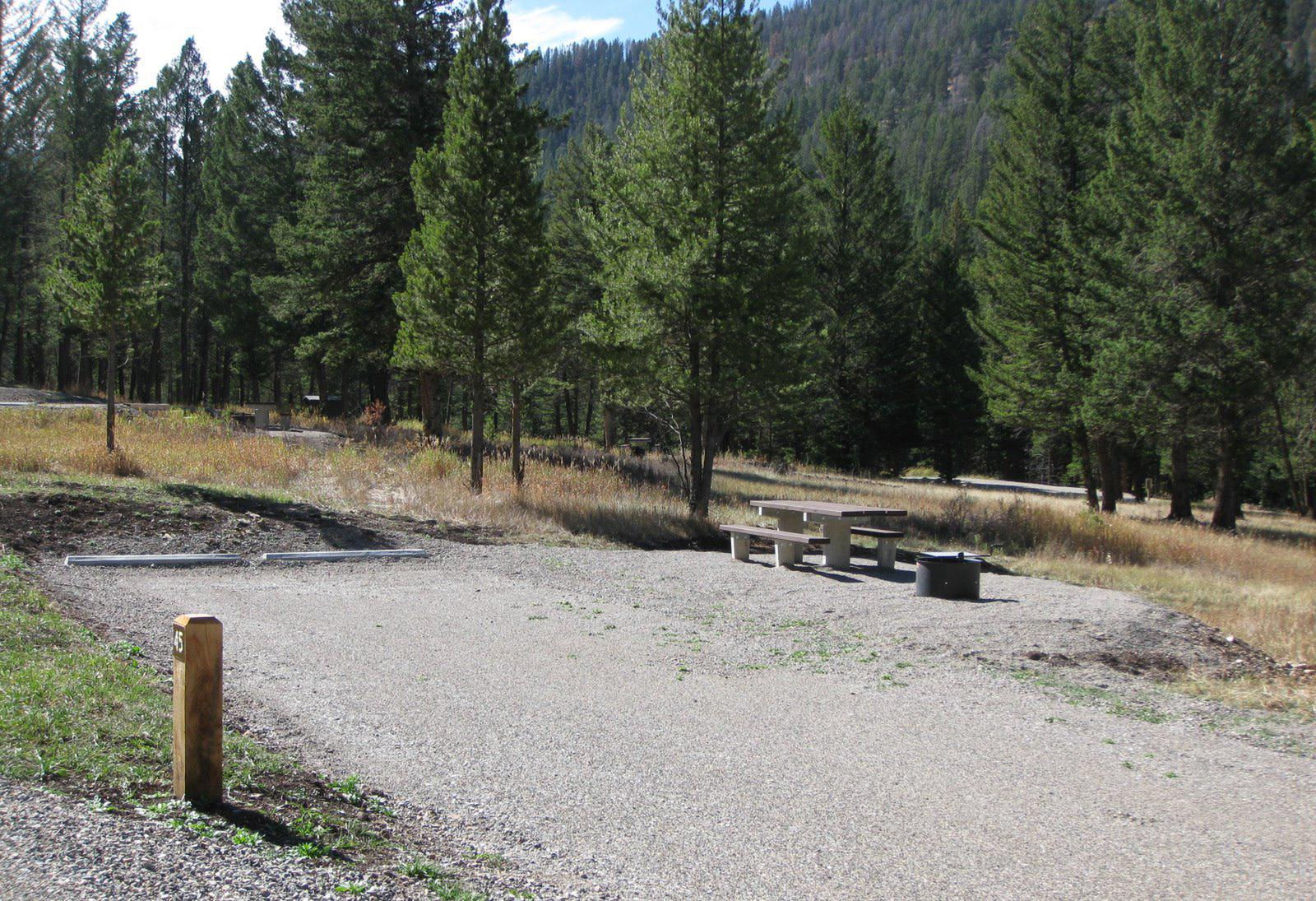Site 45, campsite surrounded by pine trees, picnic table & fire ringSite 45