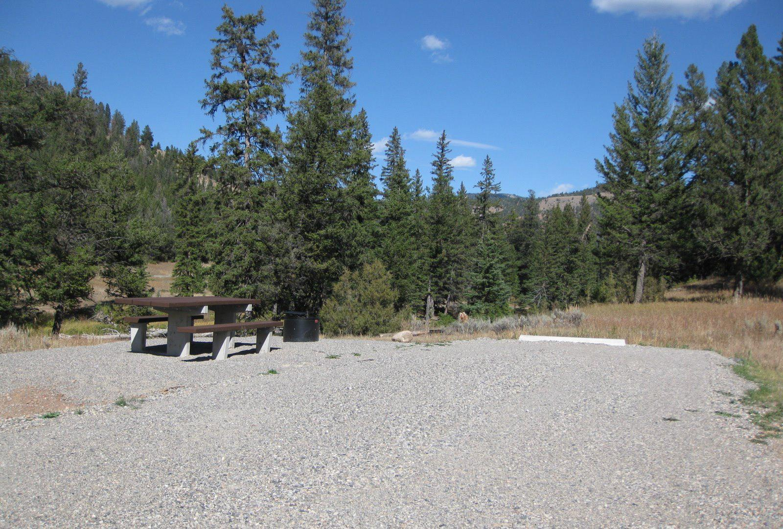 Site 52, campsite surrounded by pine trees, picnic table & fire ringSite 52