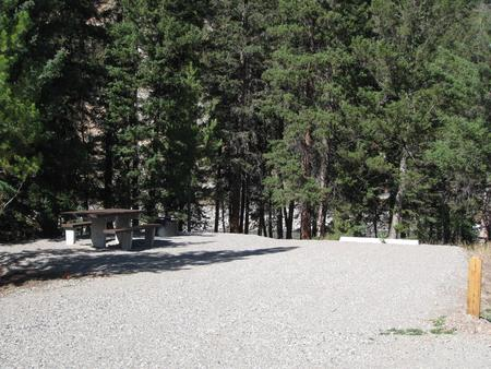 Site 55, campsite surrounded by pine trees, picnic table & fire ringSite 55