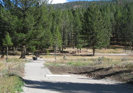 Site 58, campsite surrounded by pine trees, picnic table & fire ringSite 58
