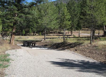Site 60, campsite surrounded by pine trees, picnic table & fire ringSite 60