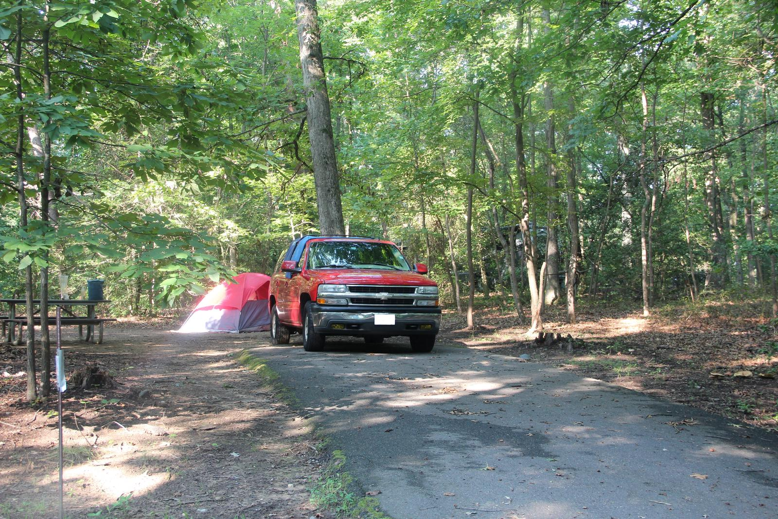 Greenbelt Park Campground D Loop Site 116