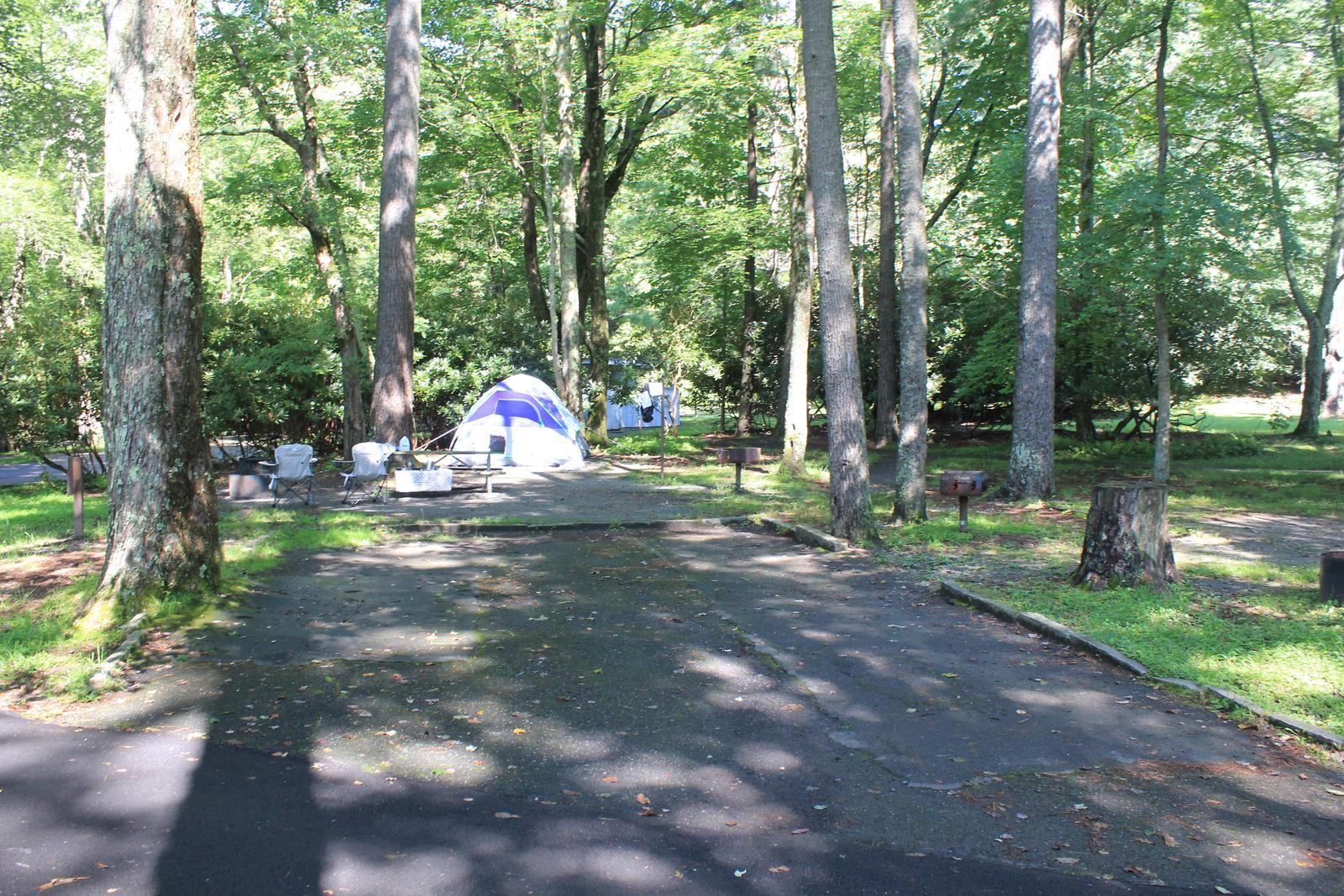 A Loop Site 20 - Tent Nonelectric (Handicap Accessible)