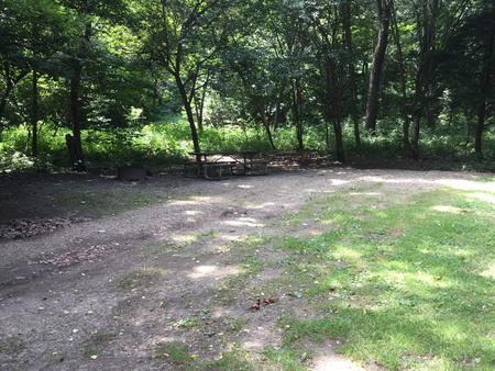 Buckaloons Site 11