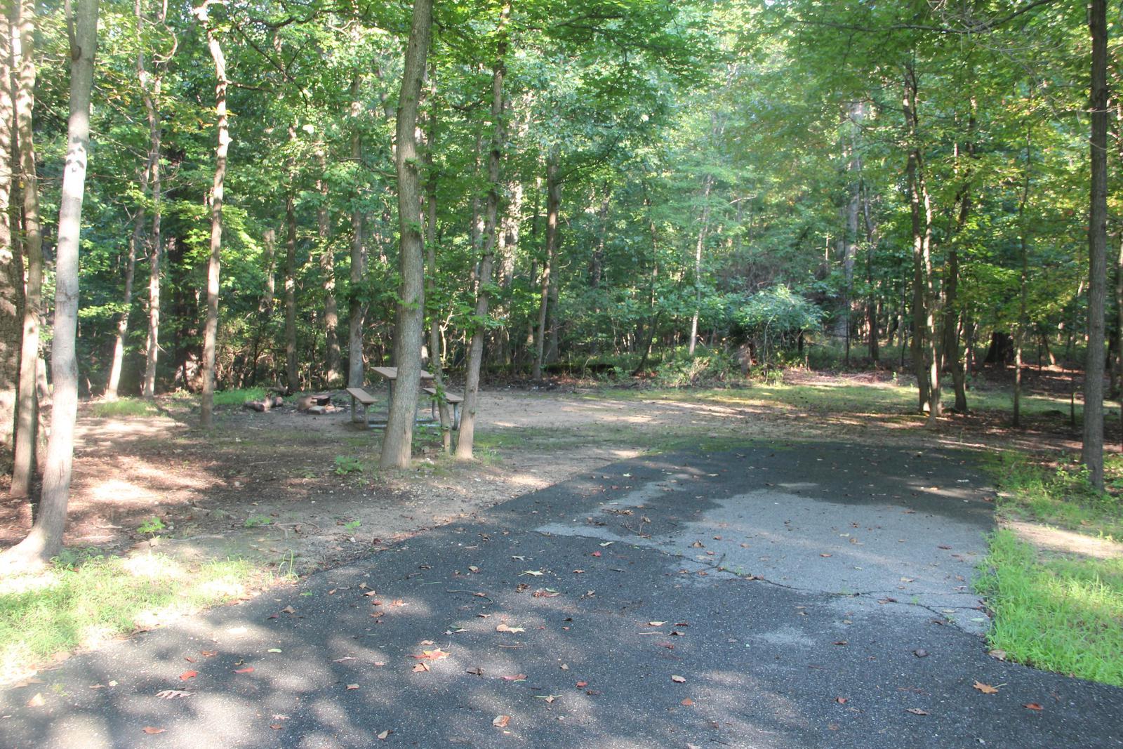 Greenbelt Park Campground C Loop Site 106