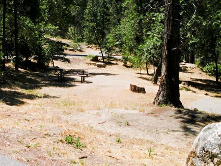 Forks Campground Site: 010, Loop: Forks Campground