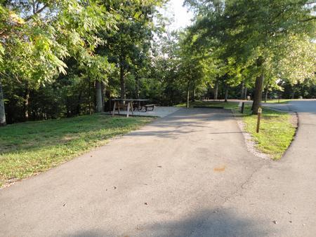 Laurel Branch - Site 05