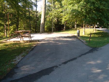 Laurel Branch - Site 06