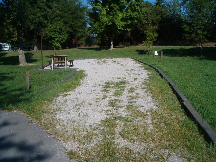 Laurel Branch - Site A07