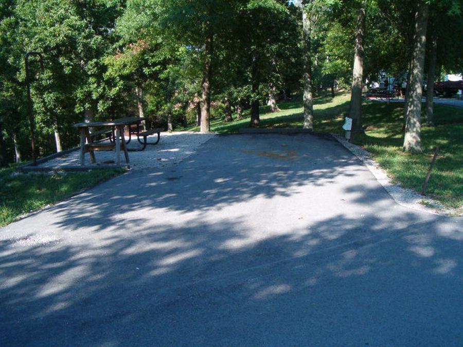 Laurel Branch - Site A10