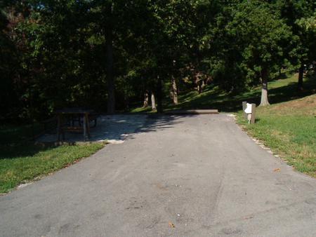 Laurel Branch - Site A12
