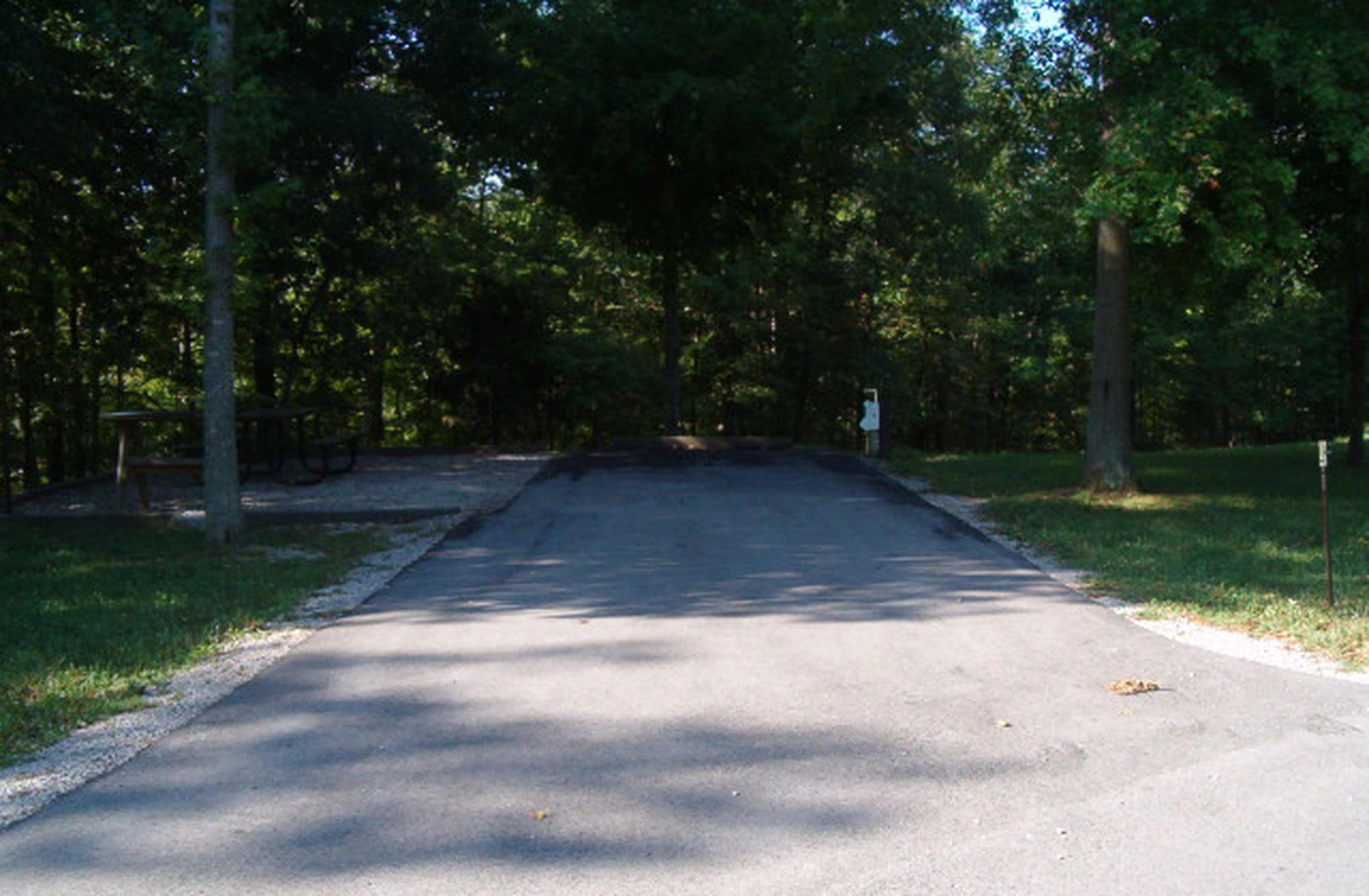 Laurel Branch - Site A16