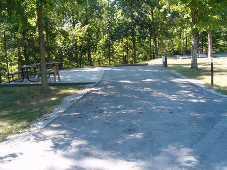 Laurel Branch - Site A018