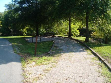 Laurel Branch - Site C31