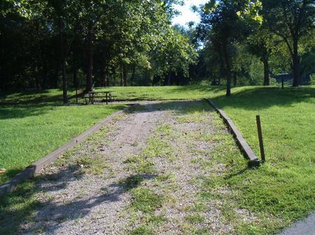 Laurel Branch - Site C37