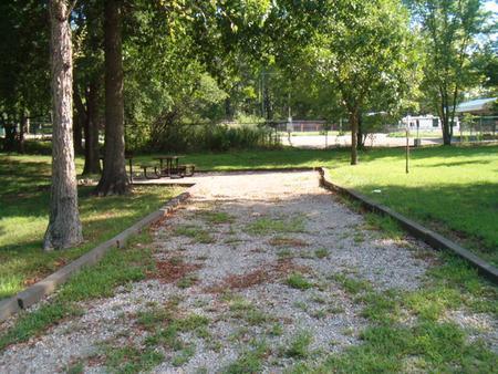 Laurel Branch - Site C41