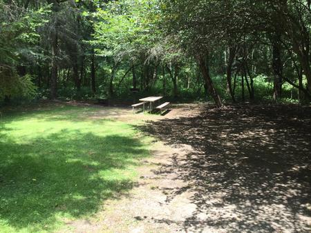 Buckaloons Site 43