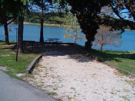 Laurel Branch - Site C53