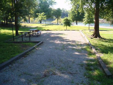 Laurel Branch - Site D55