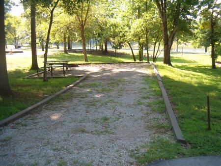 Laurel Branch - Site D56