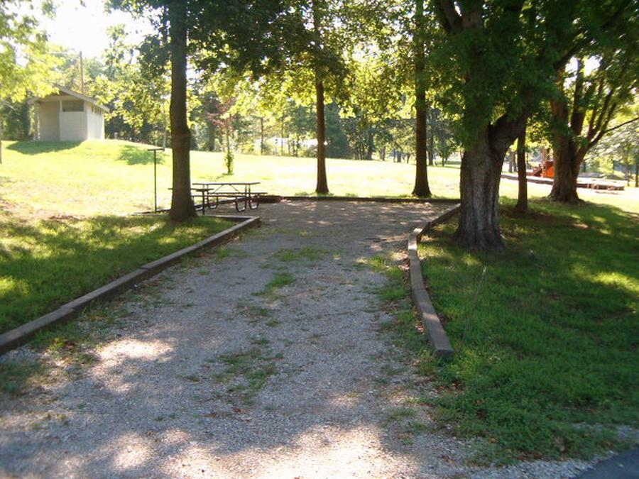Laurel Branch - Site D57