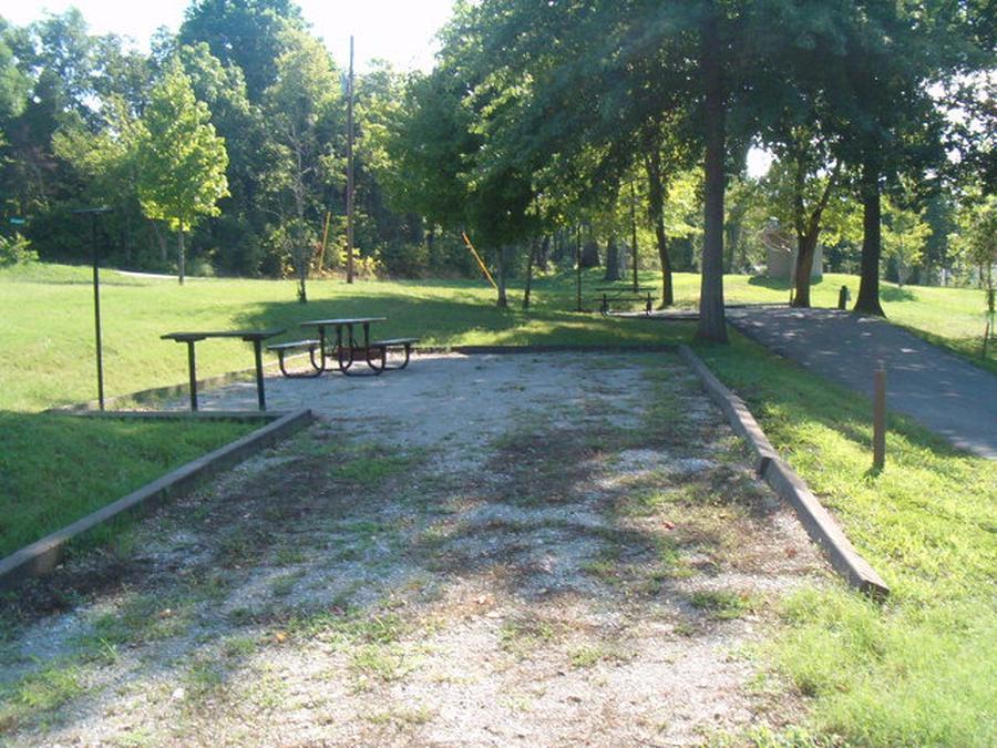 Laurel Branch - Site D60