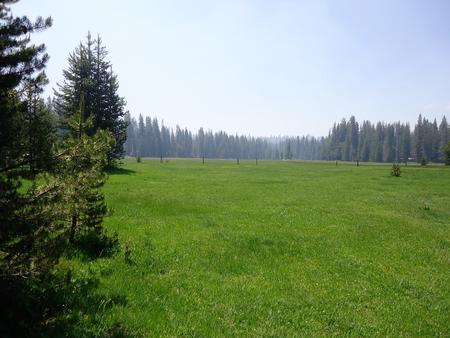Preview photo of Big Meadow Campground - Sequoia National Forest (CA)