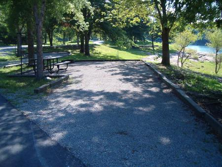Laurel Branch - Site C44