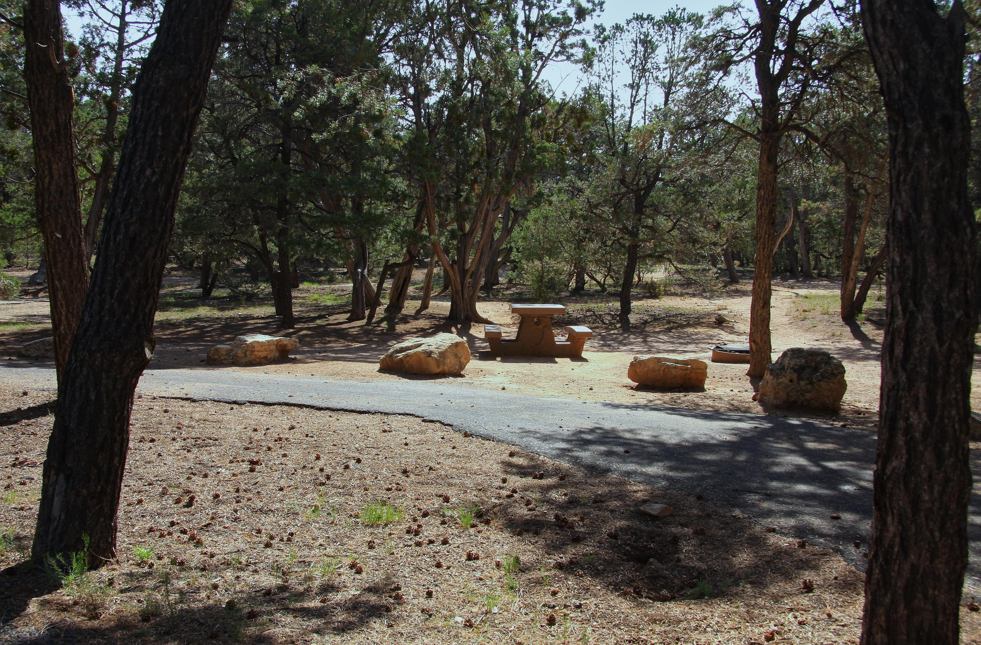 Picnic table, fire pit, and parking spot, Mather CampgroundPicnic table, fire pit, and parking spot for Oak Loop 206, Mather Campground