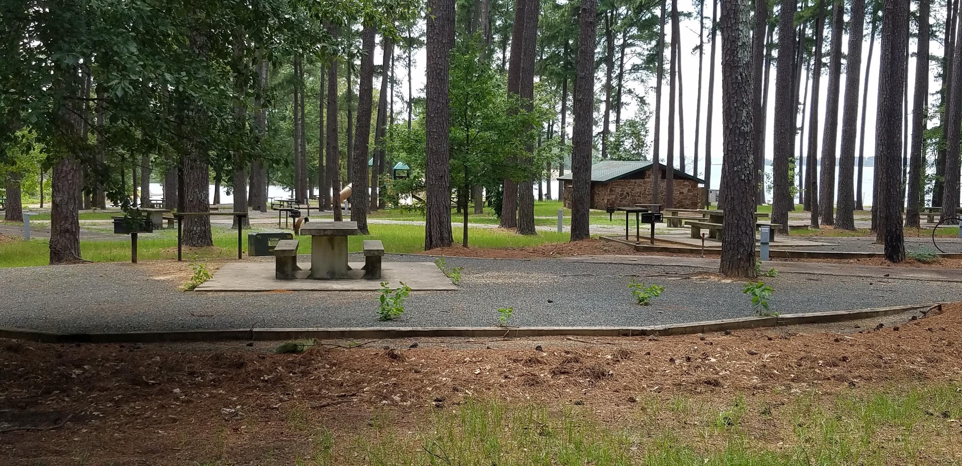 Campsite in Piney Point Park at Wright Patman Lake