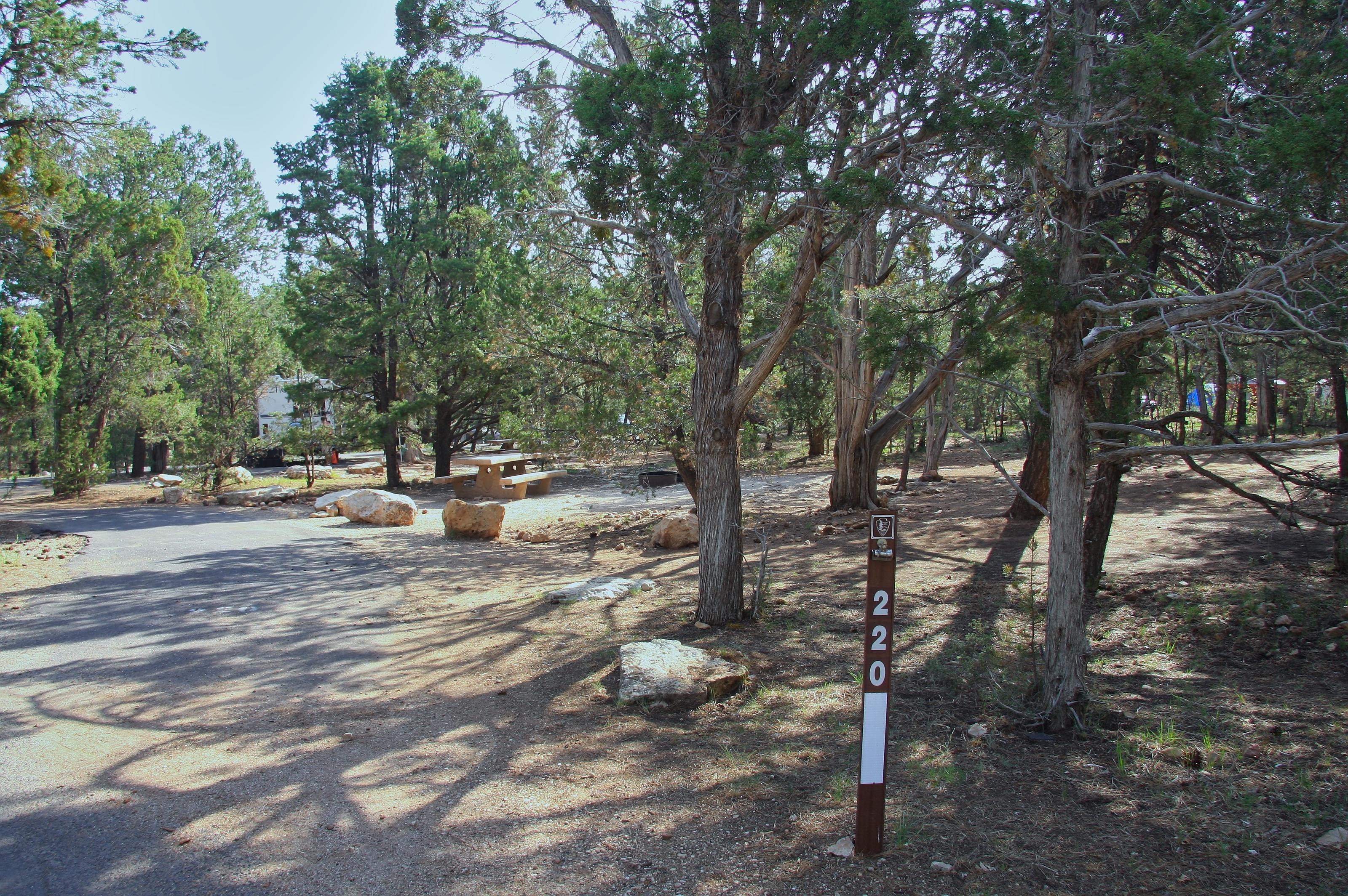 Picnic table, fire pit, and parking spot, Mather CampgroundPicnic table, fire pit, and parking spot for Oak Loop 220, Mather Campground