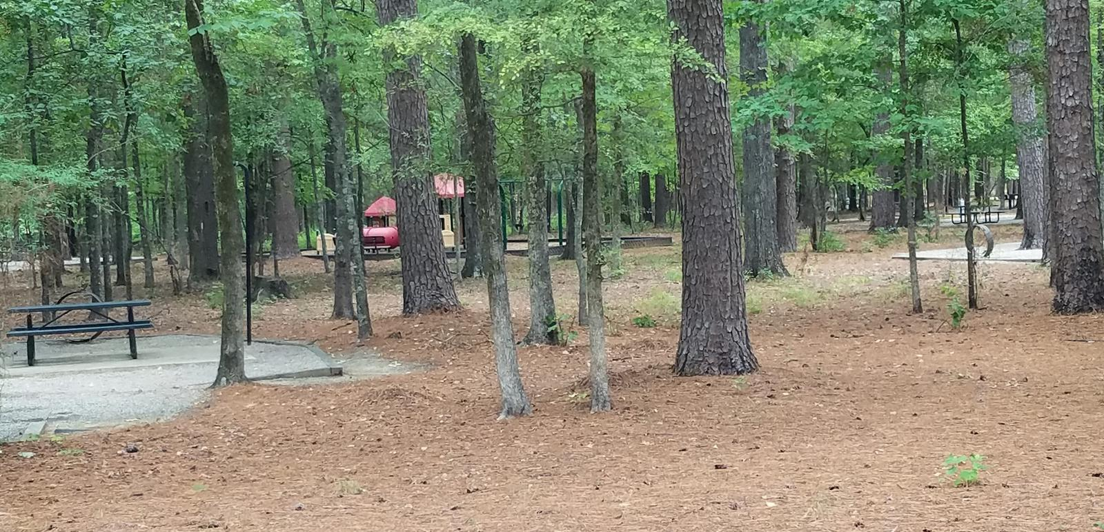 Campsite and playground in Malden Lake Campground.