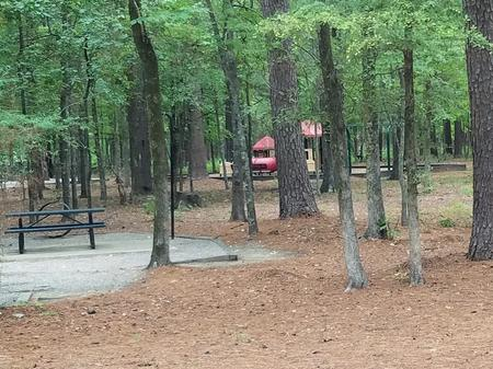 Preview photo of Malden Lake Campground