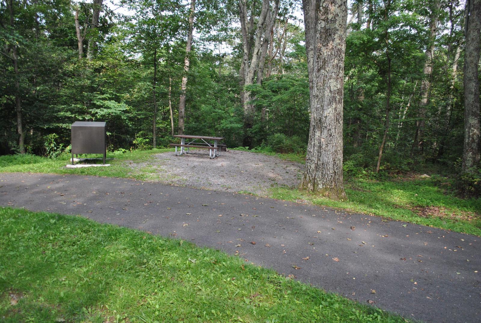 Mathews Arm Campground - Site A056