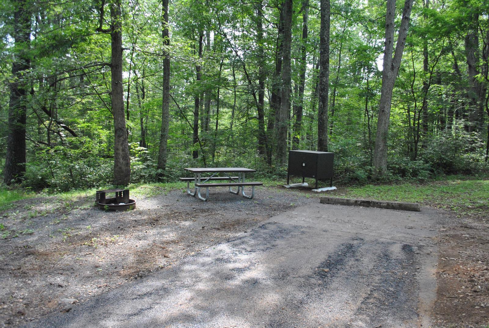 Mathews Arm Campground - Site A114