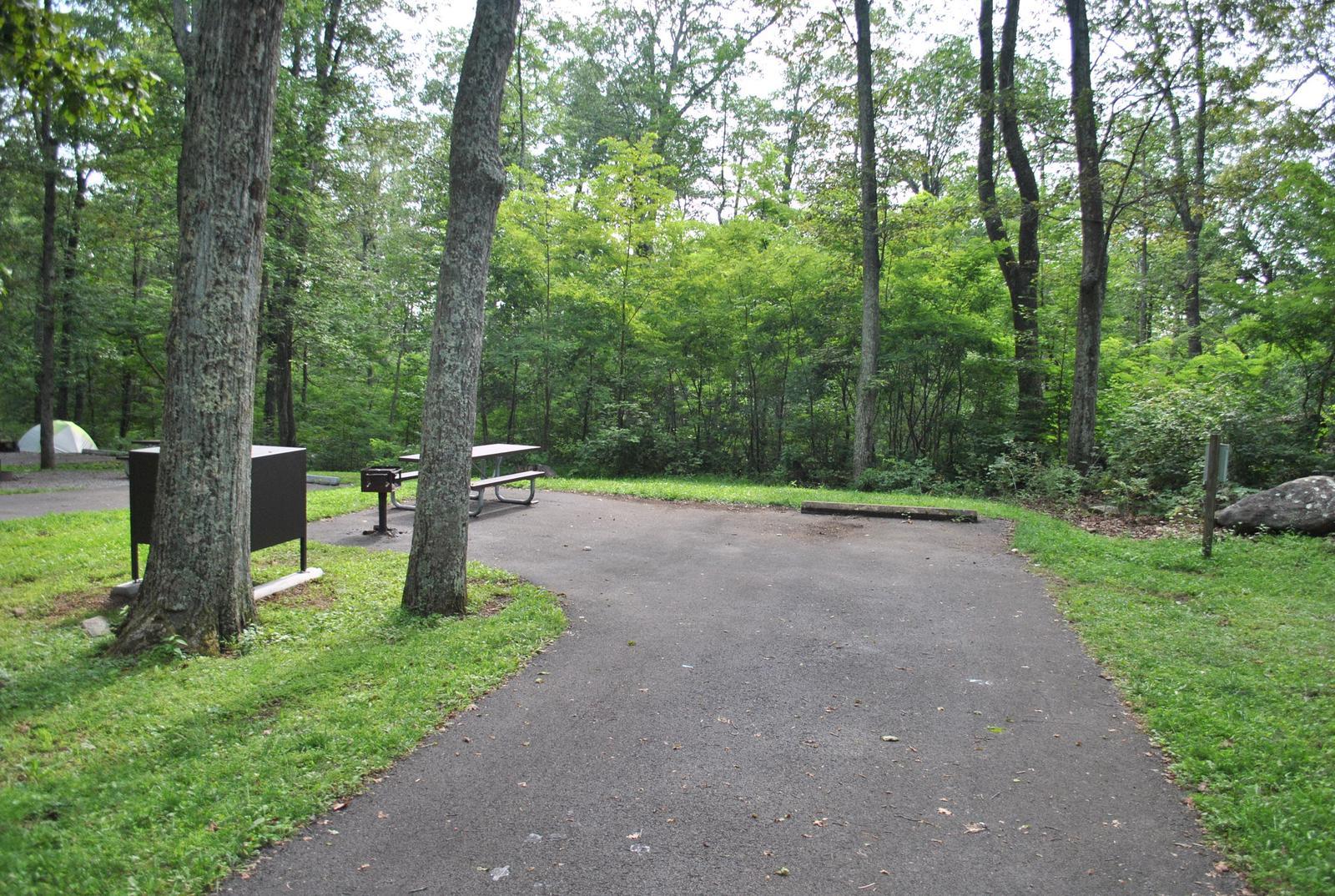 Mathews Arm Campground - Site B126