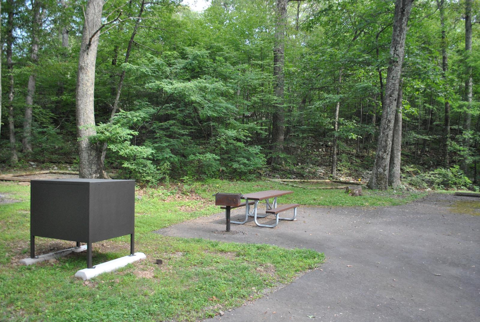 Mathews Arm Campground - Site B127