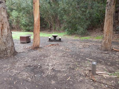 Campsite eucalyptus forested area with picnic table, food storage box, and campsite number.Lower Loop - 004