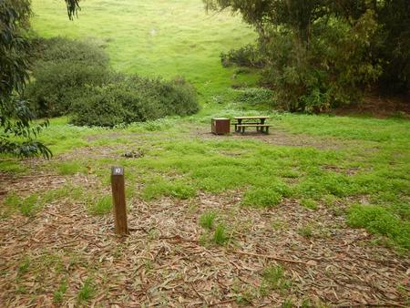 Campsite eucalyptus forested area with picnic table, food storage box, and campsite number.Lower Loop - 010