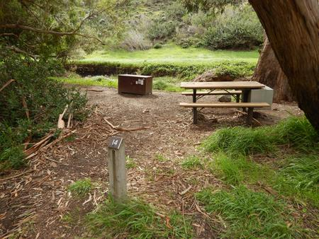 Campsite eucalyptus forested area with picnic table, food storage box, and campsite number.Lower Loop - 014