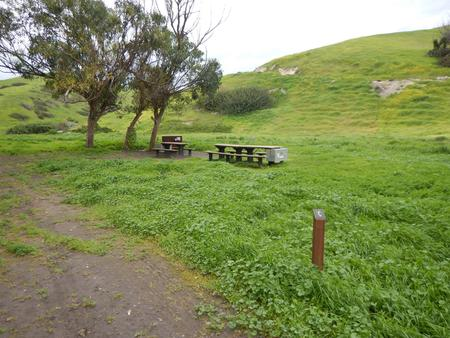 Campsite eucalyptus forested area with picnic table, food storage box, and campsite number.Upper Loop - C
