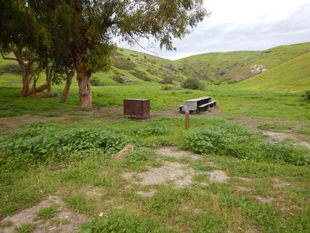 Campsite eucalyptus forested area with picnic table, food storage box, and campsite number.Upper Loop - F