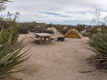 Cottonwood Campground (CA) | Recreation gov
