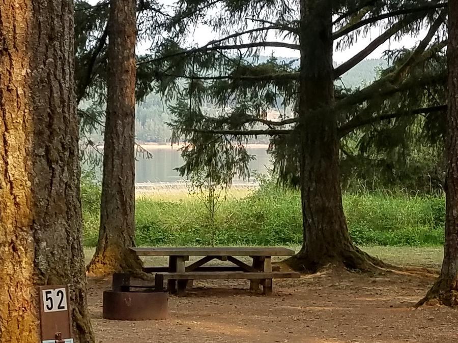 Site 52, Pine Meadows Campground - Recreation.gov