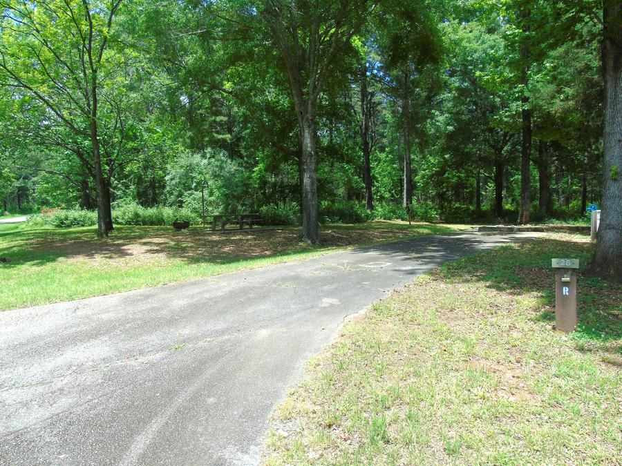 Campsite with Picnic Table.Site 28