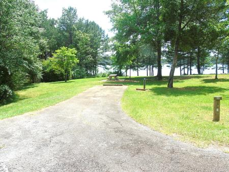 Campsite with Picnic Table.Site 31