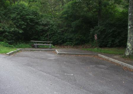 A Loop Site 7  - RV Nonelectric (Handicap Accessible)