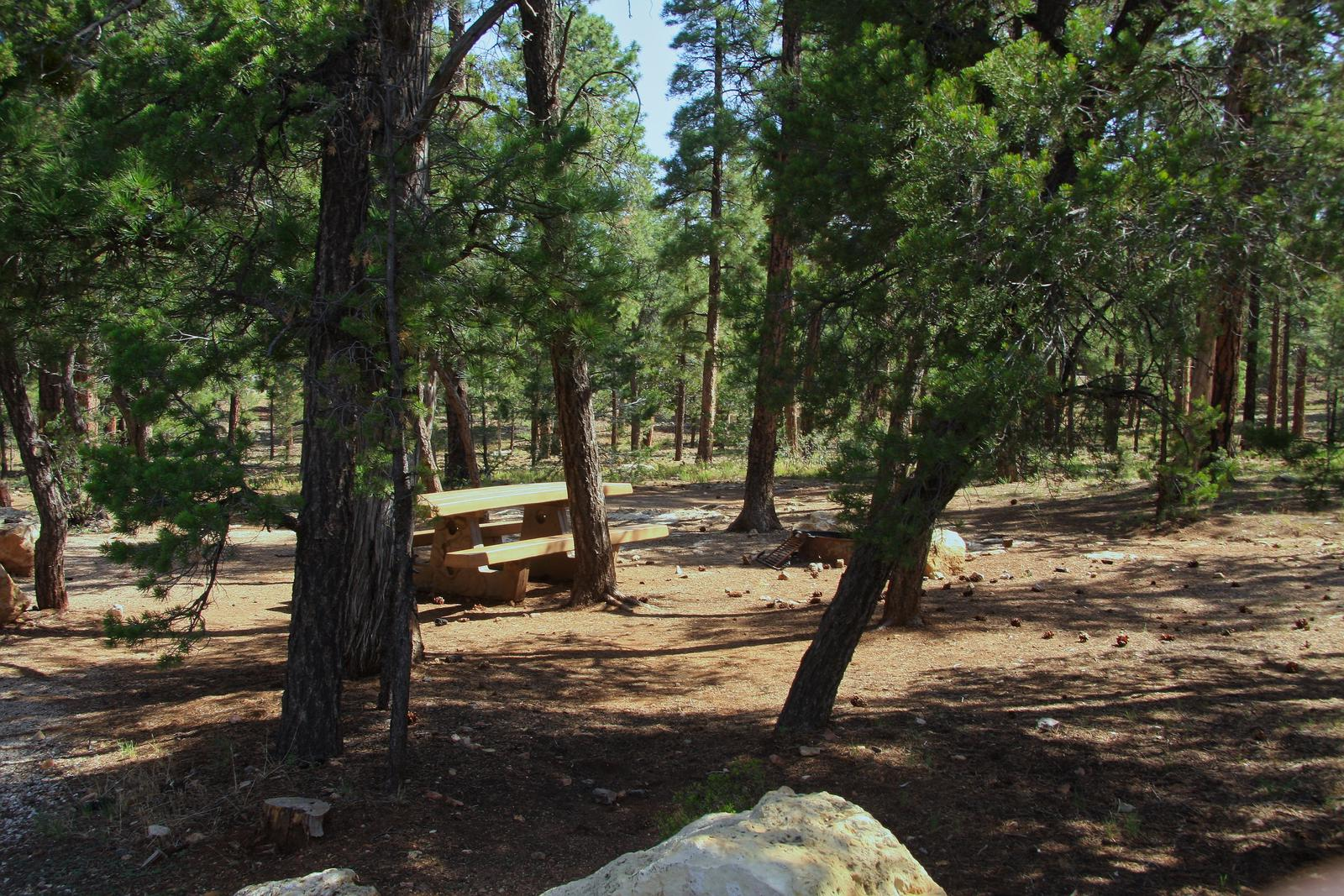 Picnic table, fire pit, and park spot, Mather CampgroundPicnic table, fire pit, and park spot for Oak Loop 229, Mather Campground