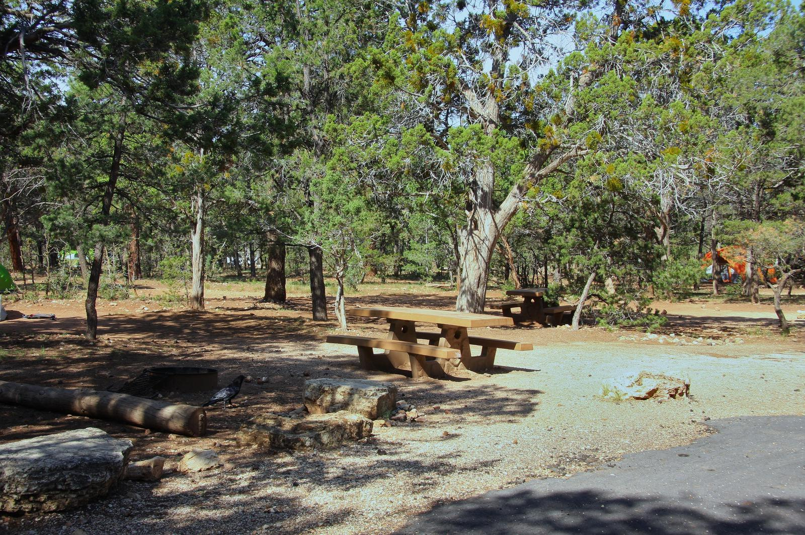 Picnic table, fire pit, and park spot, Mather CampgroundPicnic table, fire pit, and park spot for Oak Loop 230, Mather Campground